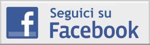 42-42-seguici_su_facebook_logo